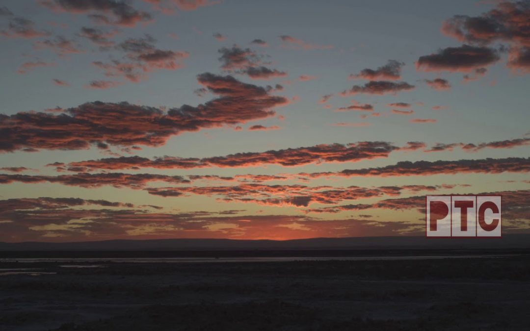CHILE, ATACAMA DESERT, SALT FLATS, SALAR, SUNSET, FLAMINGOS, 4k STOCK FOOTAGE for License