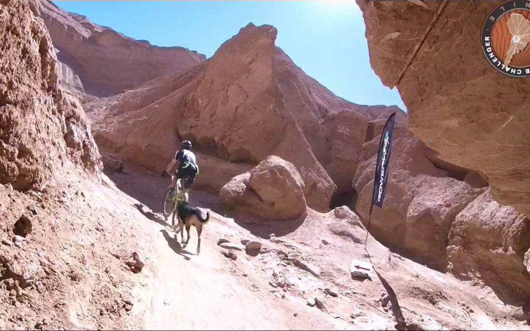 Atacama challenger 2019 I
