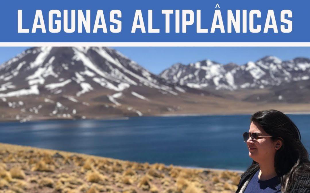 ATACAMA #3: LAGUNAS ALTIPLÂNICAS & PIEDRAS ROJAS | Foco no Mundo